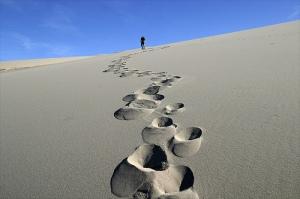 desert-journey
