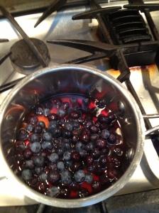 Photo 12 Blueberries